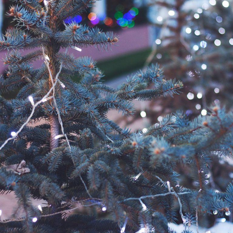 Dein perfekter Look für den Weihnachtsmarkt