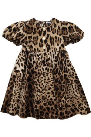 Dolce & Gabbana Kleid Aus Stretch-samt Mit Leodruck
