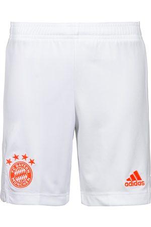 adidas Kurze Sporthosen für Mädchen Online Kaufen | FASHIOLA