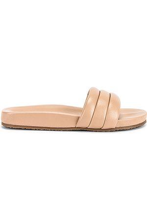 Seychelles Low Key Sandal in . Size 9.