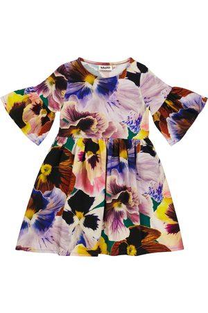 Molo Kleid Chasity aus Samt