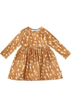 Molo Baby Kleid Charmaine aus Stretch-Baumwolle