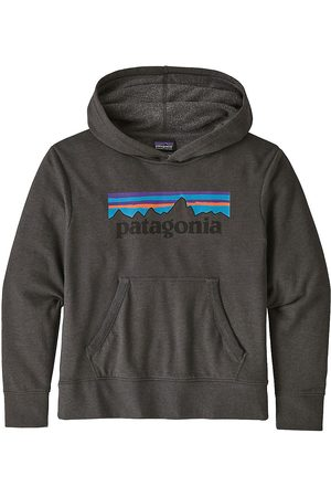 Patagonia LW Graphic Hoodie